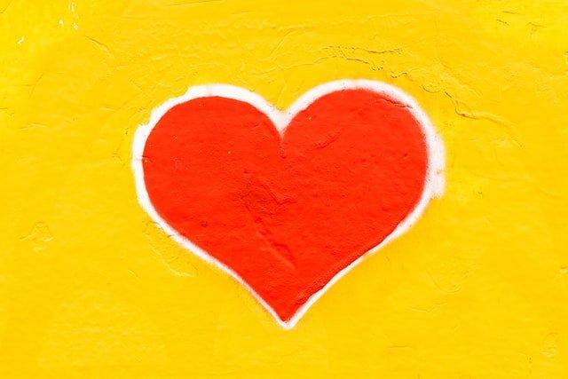 זכויות אוטם הלב